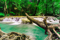 Rainforests waterfall at Erawan waterfall National Park ,Thailan Royalty Free Stock Image