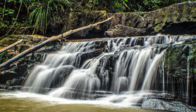 Rainforests waterfalls Royalty Free Stock Photo