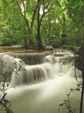 Rainforestvattenfall Arkivbild