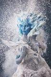 Rainha bonita da neve Foto de Stock