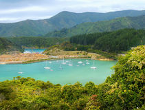 Rainha Charlotte Sound, Marlborough, NZ Imagem de Stock Royalty Free