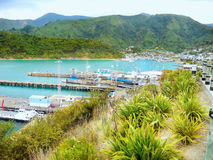Rainha Charlotte Sound, porto Marlborough de Picton, NZ Foto de Stock