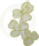 Rainha da flor Fotos de Stock Royalty Free