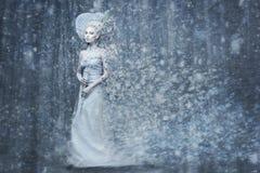 Rainha da neve do conto de fadas no mais forrest mágico Fotos de Stock