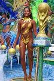 Rainha do copo de mundo Imagem de Stock Royalty Free
