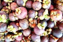 Rainha do fruto Imagens de Stock
