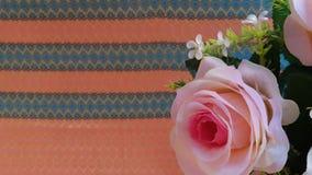 A rainha do hybrida de Rosa da flor aumentou foto de stock royalty free