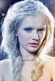 Rainha do inverno Imagens de Stock