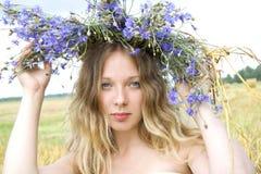 Rainha dos cornflowers Foto de Stock Royalty Free