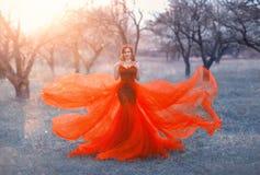 A rainha no vestido vermelho do voo elegante longo brilhante levanta para a foto, mulher com cabelo escuro e a coroa em sua cabe? fotos de stock royalty free