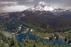 Rainier stock photography