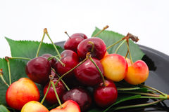 Rainier And Bing Cherries. Summer cherries on a black saucer with a light background Stock Images