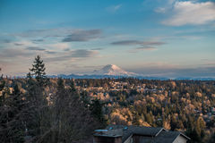 Rainier From Burien 2. A view of Mount Rainier from Burien, Washington royalty free stock photography