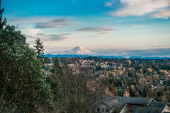 Rainier From Burien 6. A view of Mount Rainier from Burien, Washington royalty free stock photography