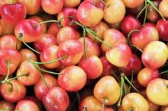 Rainier Cherries Royalty Free Stock Photos