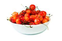 Rainier cherries Stock Photography