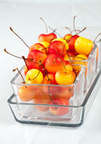 Rainier cherries. Delicious and colorful fresh rainier cherries in a bowl Royalty Free Stock Photos