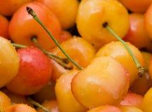 Rainier cherries. Delicious organic rainier cherries in a bowl Royalty Free Stock Image