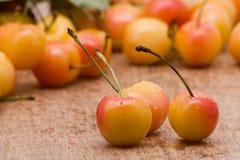 Rainier cherries. Delicious organic rainier cherries on wooden table Royalty Free Stock Photography