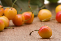 Rainier cherries. Delicious organic rainier cherries on wooden table Royalty Free Stock Photo
