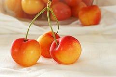 Rainier Cherries. Fresh Rainier cherries with bowl of cherries in background Stock Photos