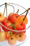 Rainier cherries Royalty Free Stock Photo