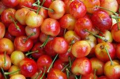 Rainier cherries background Royalty Free Stock Images