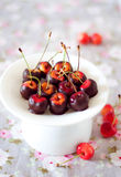Rainier cherries dipped in black chocolate. On a white cake stand Royalty Free Stock Photography
