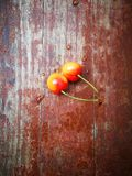 Rainier Cherries fruit lying on red wooden board Royalty Free Stock Images