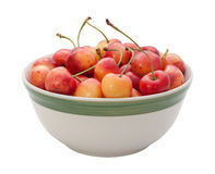 Rainier Cherries Isolated Stock Image