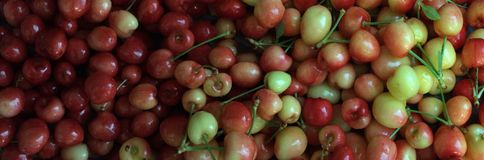 Rainier cherries, macro view Royalty Free Stock Photo