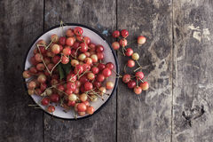 Rainier cherries. On old wooden table, from above Royalty Free Stock Image
