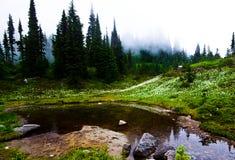 Rainier hiking Royalty Free Stock Photo