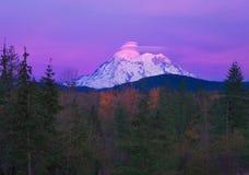 Rainier National Park imagens de stock royalty free