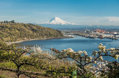 Rainier and Port Panoramic 5 Stock Photos