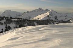 Rainier Ridge Royalty Free Stock Photo