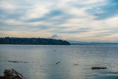Rainier From Three Tree Point Fotos de Stock Royalty Free