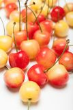 Rainier yellow cherry dessert, delicious bowl with berry.  stock images