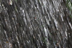 Raining. Strong shower reflecting sun rays Royalty Free Stock Photo