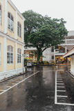 Raining with Colonial Buildings and Big Tree at George Town. Penang, Malaysia Stock Photography