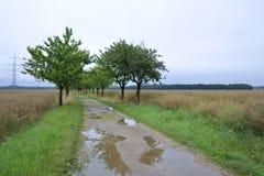 Raining day Stock Images
