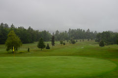 Raining on the golf course Stock Photography