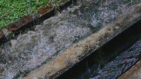 Raining on the ground. With water splash stock footage