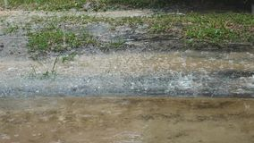 Raining on the ground. With water splash stock footage