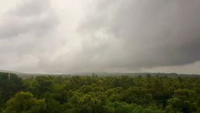 Raining over a forest. Bad weather with dark clouds timelapse. stock video