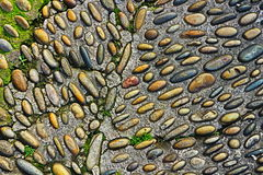 Raining on the pebbles Royalty Free Stock Images