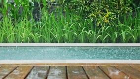 Raining Pool Tropical Dolly Slowmotion. Slowmotion footage of rain falling into a pool stock video