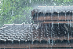 Raining on the roof Royalty Free Stock Photo