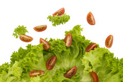 Raining salad. Explosion of fresh and healthy salad Stock Images
