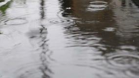 It is raining stock footage
